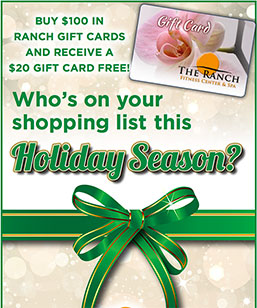 holiday-gift-card-special